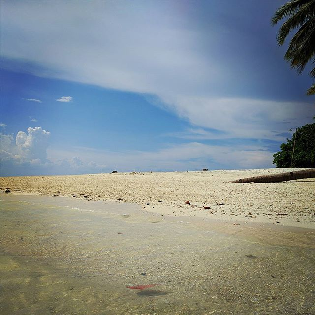 Pristine water and powdery sand in Kaputian, Samal Island. One day, I'll buy a summer house near the beach for the kids and we will get out of the city and spend their summers there while I drive/fly back for business. One day.